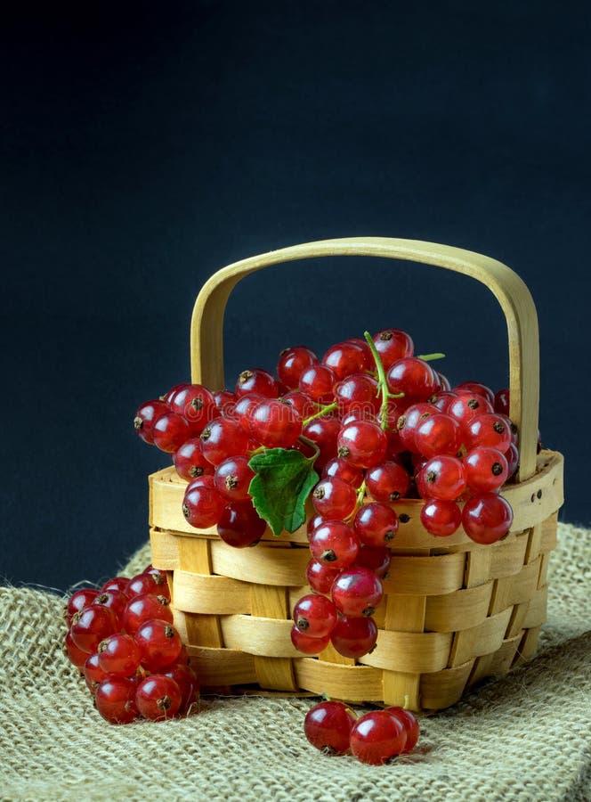 Groseilles rouges dans un panier en bois photo stock