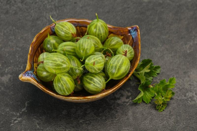 Groselha doce verde madura fresca imagem de stock
