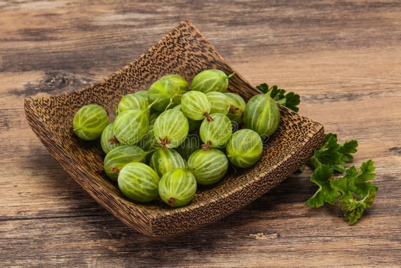 Groselha doce verde madura fresca fotos de stock royalty free