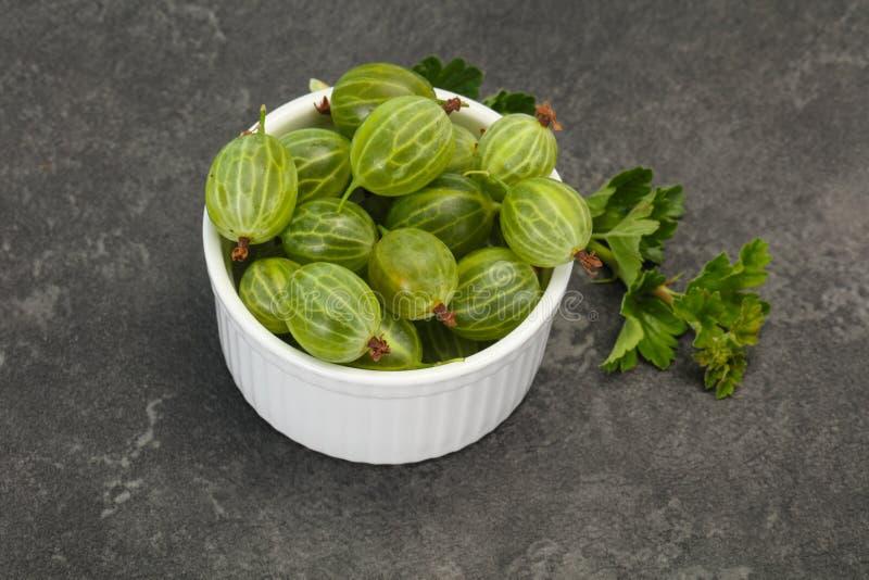 Groselha doce verde madura fresca imagem de stock royalty free