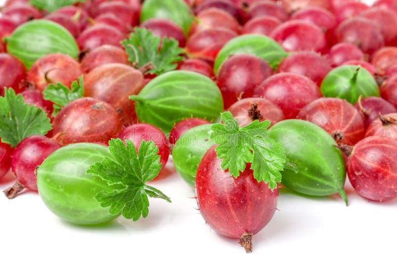 Groselhas vermelhas e verdes com as folhas isoladas no fundo branco fotos de stock royalty free