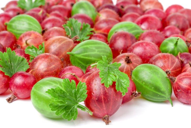 Groselhas vermelhas e verdes com as folhas isoladas no fundo branco fotos de stock