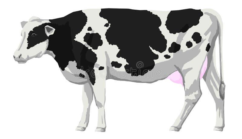 Grosse position noire et blanche de vache du Holstein de taches illustration de vecteur