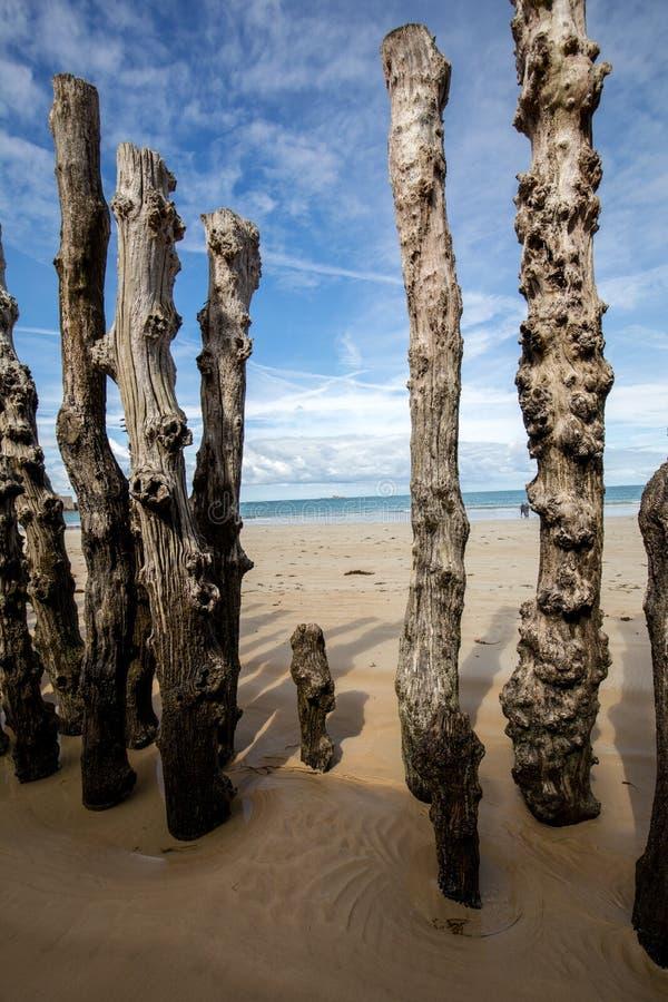 Grosses Wellenbrecher, 3000 Stämme, um die Stadt vor den Gezeiten zu schützen, Plage de l'Éventail Strand in Saint-Malo stockfotografie