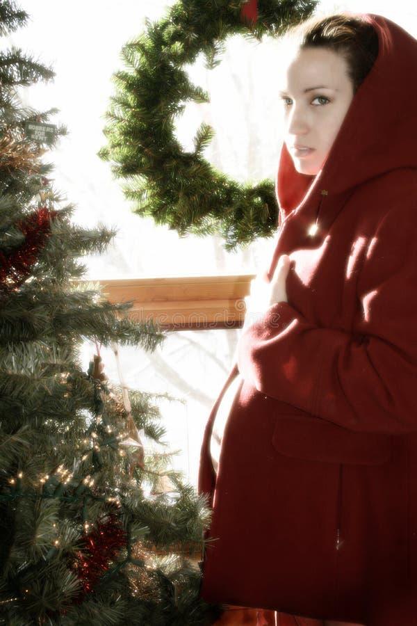 Grossesse 3 de Noël photos stock