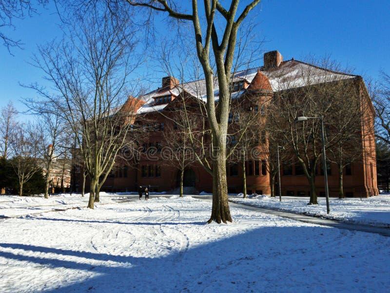 Grossman-Bibliothek der Universität Harvard in Cambridge lizenzfreie stockfotos