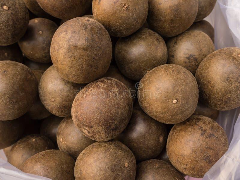 Grosvenorii kinesisk växt- frukt arkivfoto