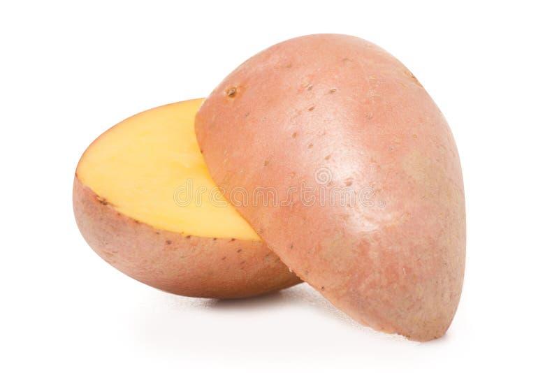 Grote aardappel één royalty-vrije stock foto