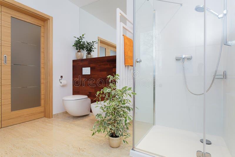 Grote badkamers met installaties stock afbeeldingen