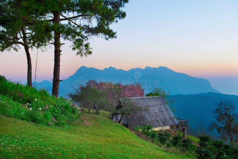 Grote berg voor trekking stock fotografie
