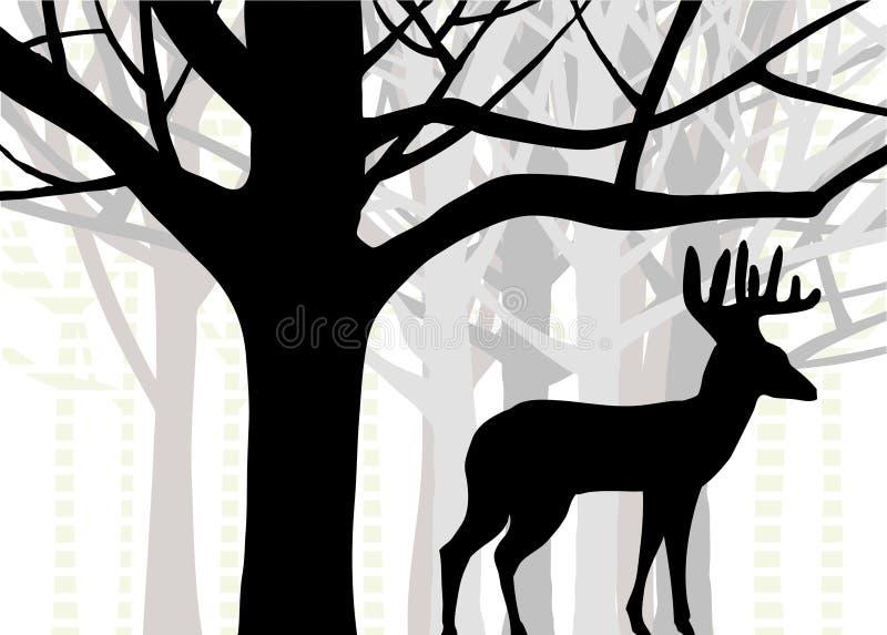 Grote bok of whitetail herten die zich in bos van eik en berkbomen bevinden stock illustratie