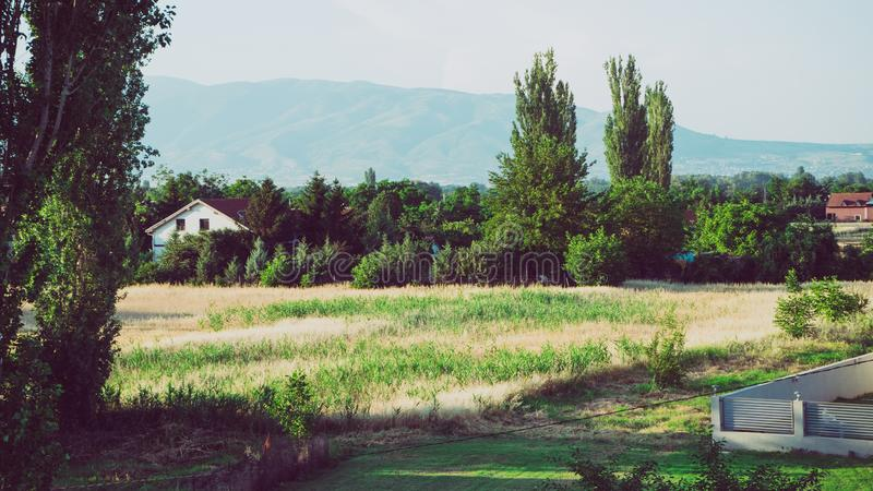 Grote bomen in landelijk landbouwbedrijf in het platteland Weergeven van een dorp met rode daken, gele en groene gebieden, bergen stock fotografie