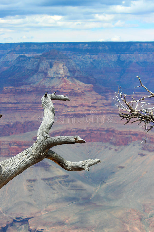 Grote canion, AZ royalty-vrije stock foto's