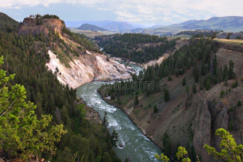 Grote Canion van Nationaal Park Yellowstone royalty-vrije stock foto's