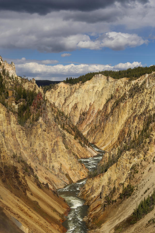 Grote canion in yellowstone nationaal park stock foto