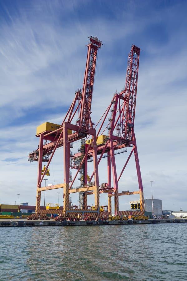 Grote containerkranen bij Swanson-Dok in de Haven van Melbourne royalty-vrije stock afbeeldingen