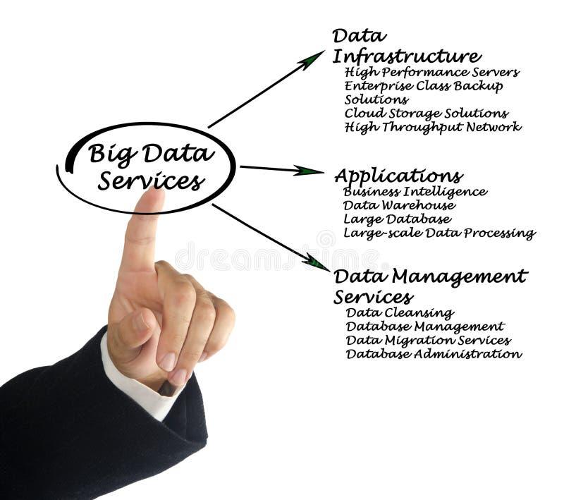 Grote Datadiensten stock foto's