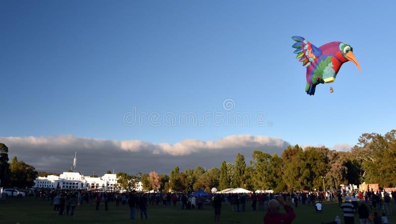Grote de ballon van de kolibrie Hete lucht lancering royalty-vrije stock fotografie