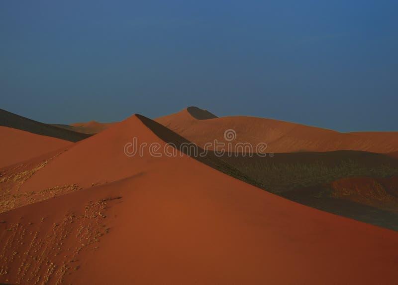 Grote duinen (woestijn Namib) stock afbeelding