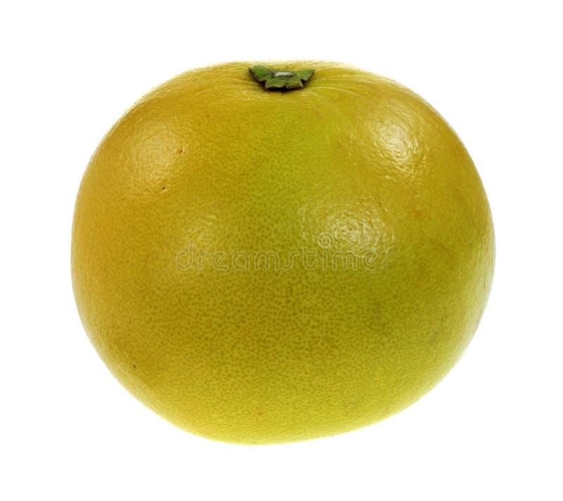 Grote Enig van het Fruit van Pommello royalty-vrije stock fotografie
