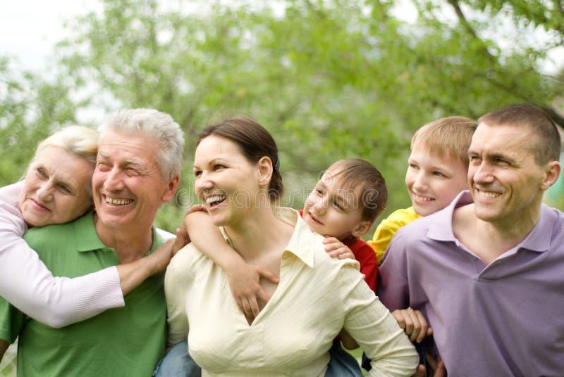 Grote familie in het de zomerpark royalty-vrije stock afbeelding