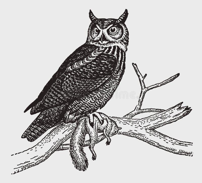 Grote gehoornde virginianuszitting van uilbubo op een tak en holding een dode eekhoorn in zijn klauw vector illustratie
