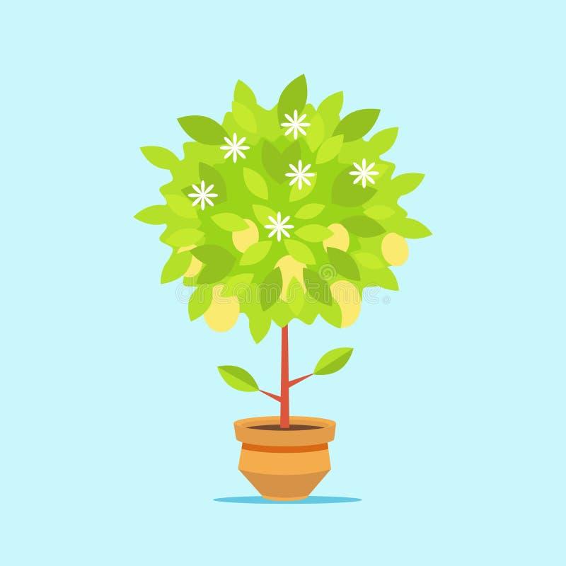 Grote geldboom in een pot De groei van financiële rijkdom Geïsoleerdj op witte achtergrond Vector, illustratie EPS10 royalty-vrije illustratie