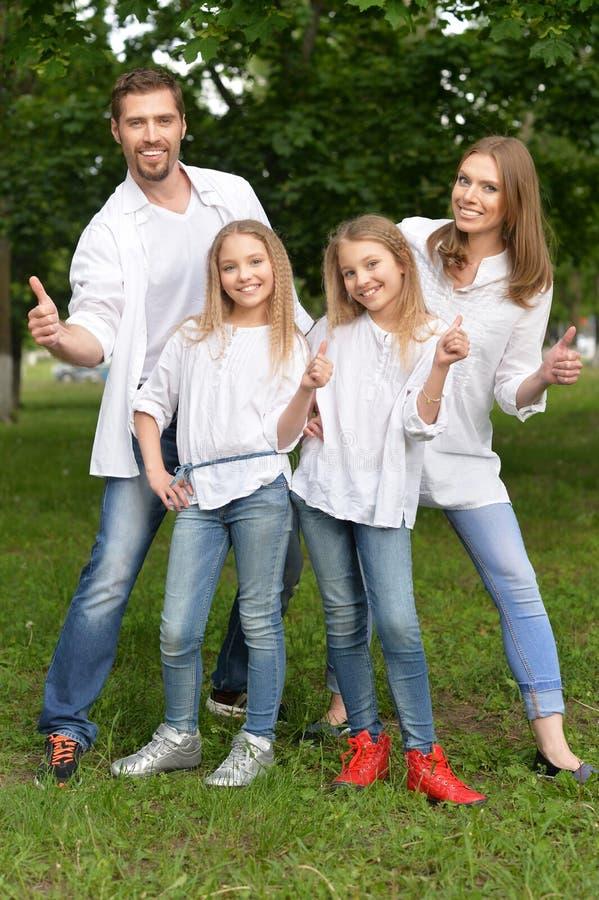 Grote gelukkige familie stock foto's