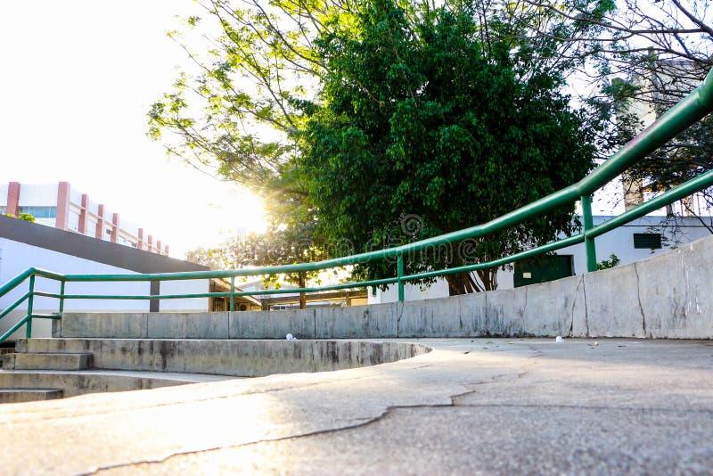 Grote groene boom die die de zon verbergen van een park wordt gezien royalty-vrije stock foto