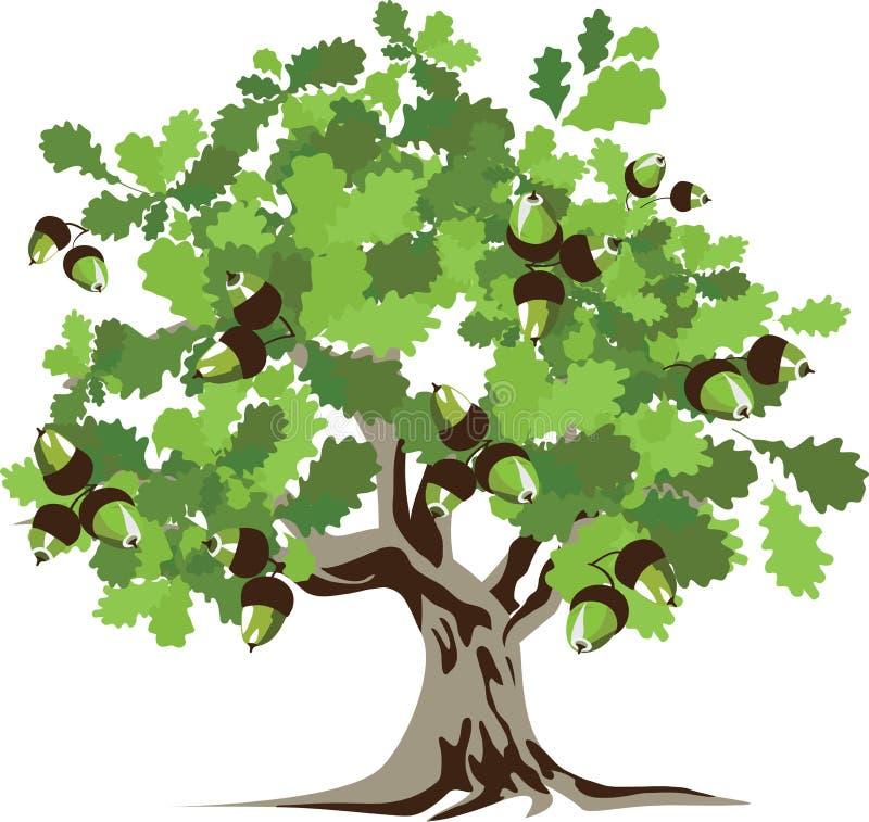 Grote groene eiken boom royalty-vrije illustratie