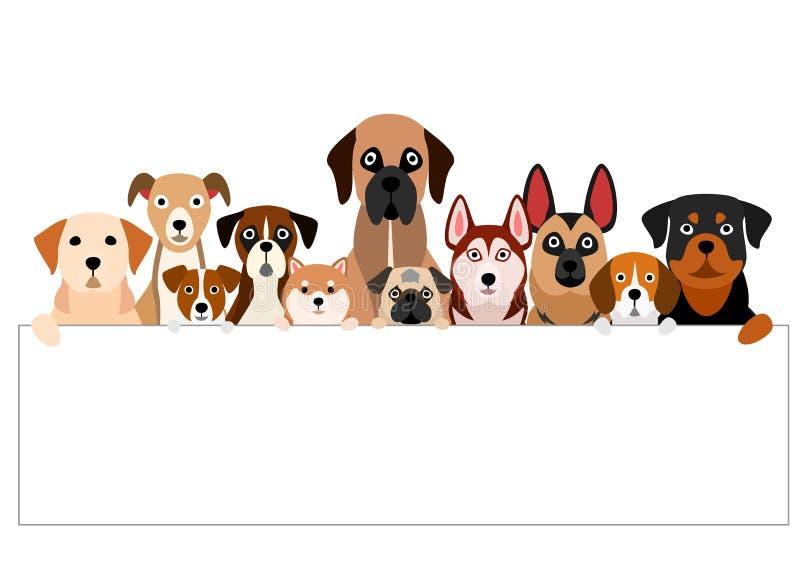 Grote groep bruinachtige honden met witte raad royalty-vrije illustratie