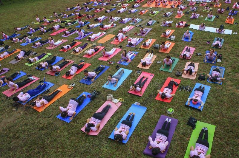 Grote groep volwassenen die een yogaklasse buiten in park bijwonen stock afbeeldingen