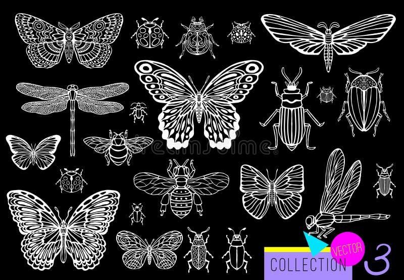 Grote hand getrokken lijnreeks insecteninsecten, kevers, honingbijen, vlindermot, hommel, wesp, libel, sprinkhaan stock illustratie