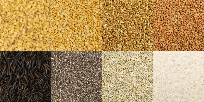 Grote inzameling van verschillende graangewassen en eetbare zaden stock fotografie