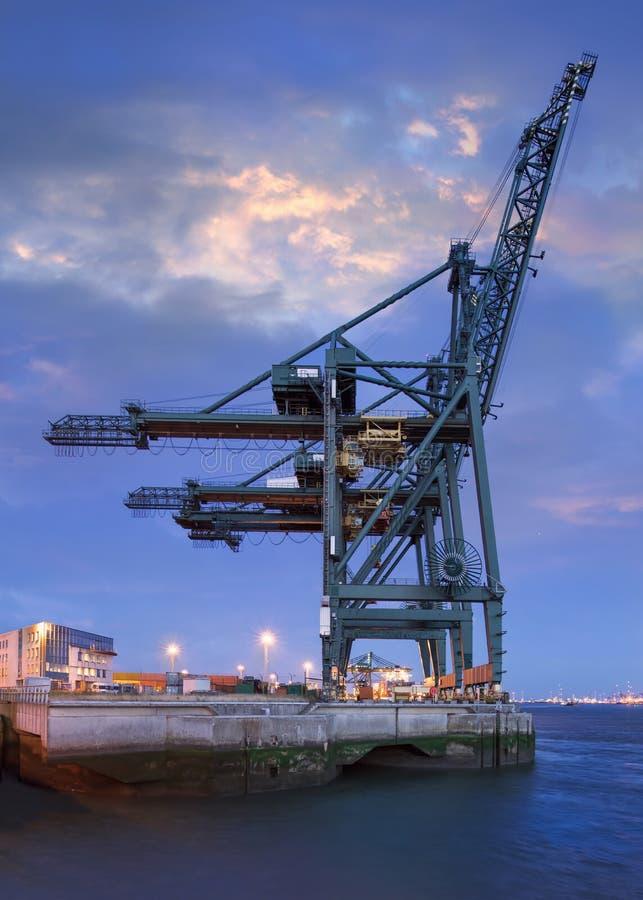 Grote kraan bij containerterminal bij twilight in de haven van Antwerpen, Vlaanderen, België royalty-vrije stock afbeelding