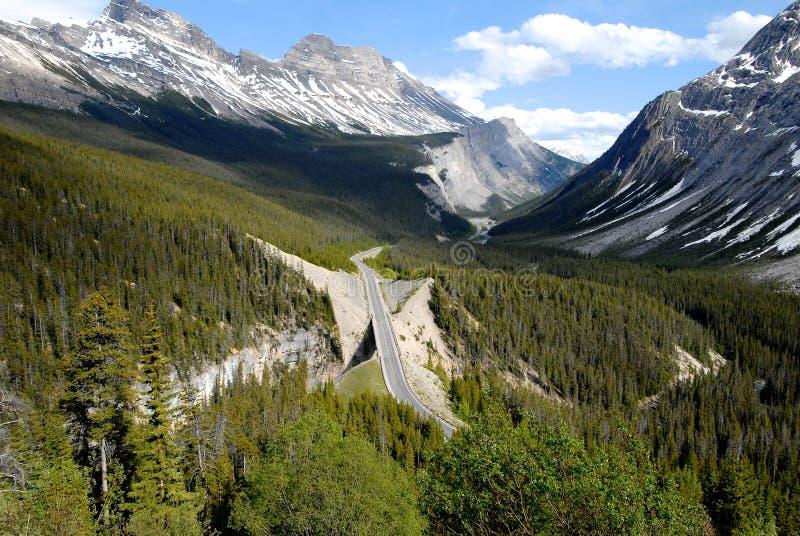 Grote Kromming op het Icefield-Brede rijweg met mooi aangelegd landschap, Canadese Rotsachtige Bergen, Canada stock foto's