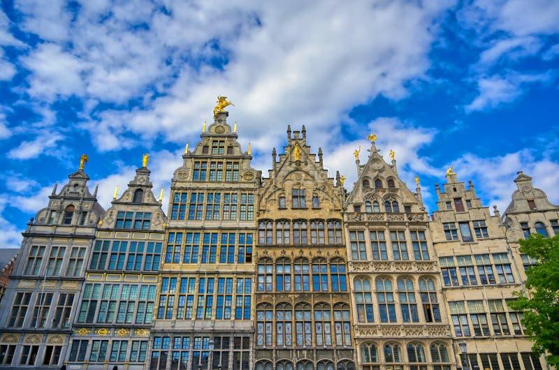 Grote Markt of Antwerp, Belgia fotografia royalty free