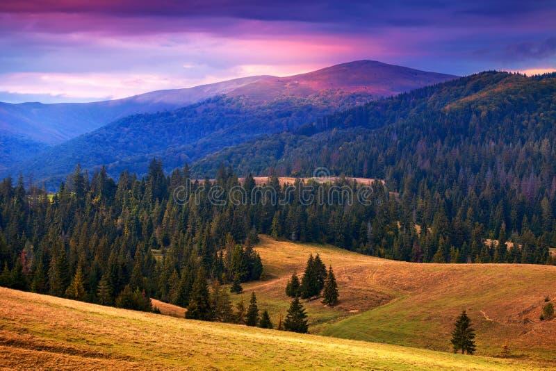 Grote mening van Karpatische bergen in zonsondergangtijd royalty-vrije stock foto
