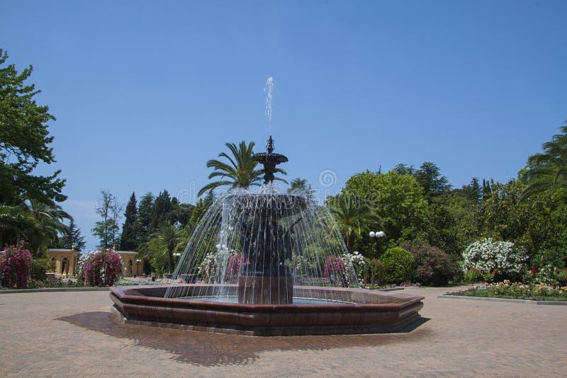 Grote mooie fontein onder de bomen stock afbeelding