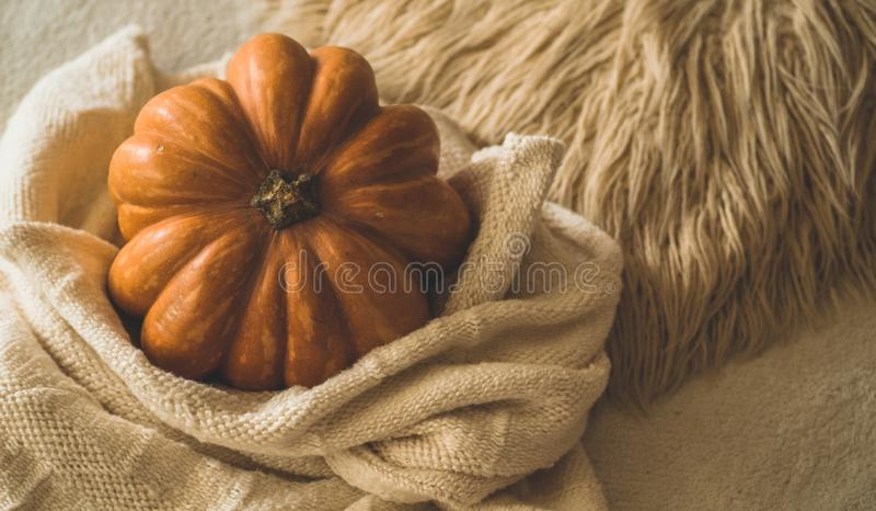 Grote oranje pompoen op warme sweater Pompoen in de zachte trui Dankzeggingsachtergrond - oranje pompoenen De stemming van de her stock fotografie