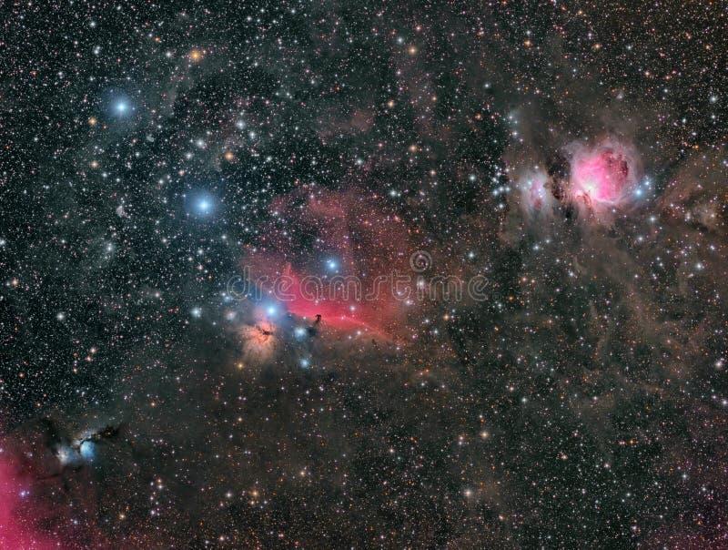 Grote Orion Nebula en de Vrienden stock foto's