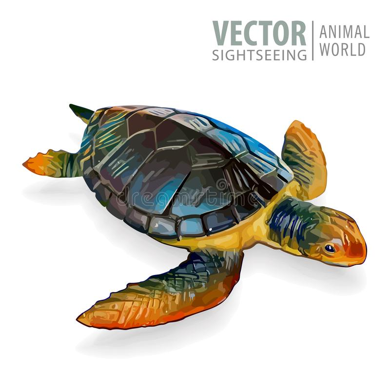 Grote overzeese schildpad Vector illustratie Schildpad op Witte Achtergrond wordt geïsoleerd die stock illustratie
