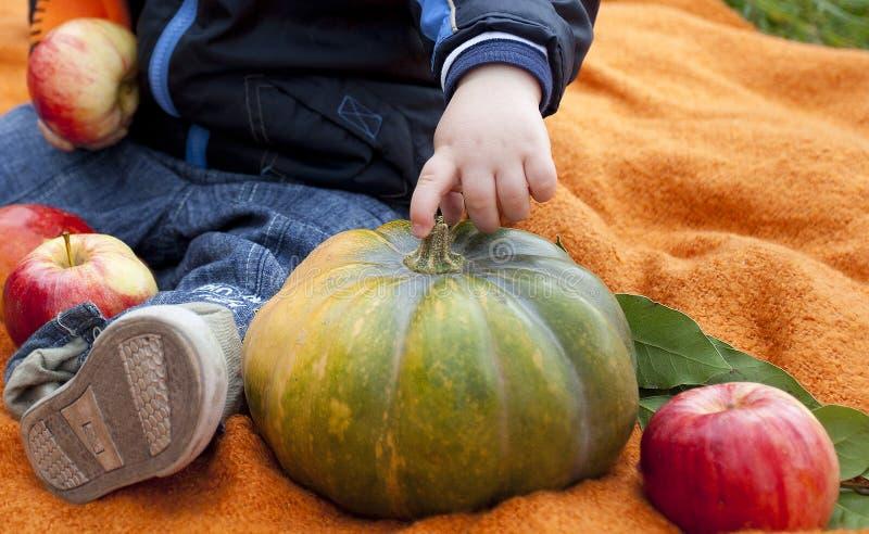 Grote pompoen, appelen en hand van kind/baby stock foto's