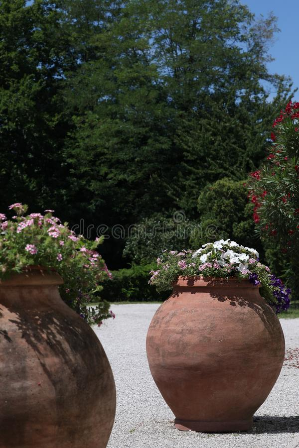 Grote potten van bloemen in exotische tuin royalty-vrije stock fotografie