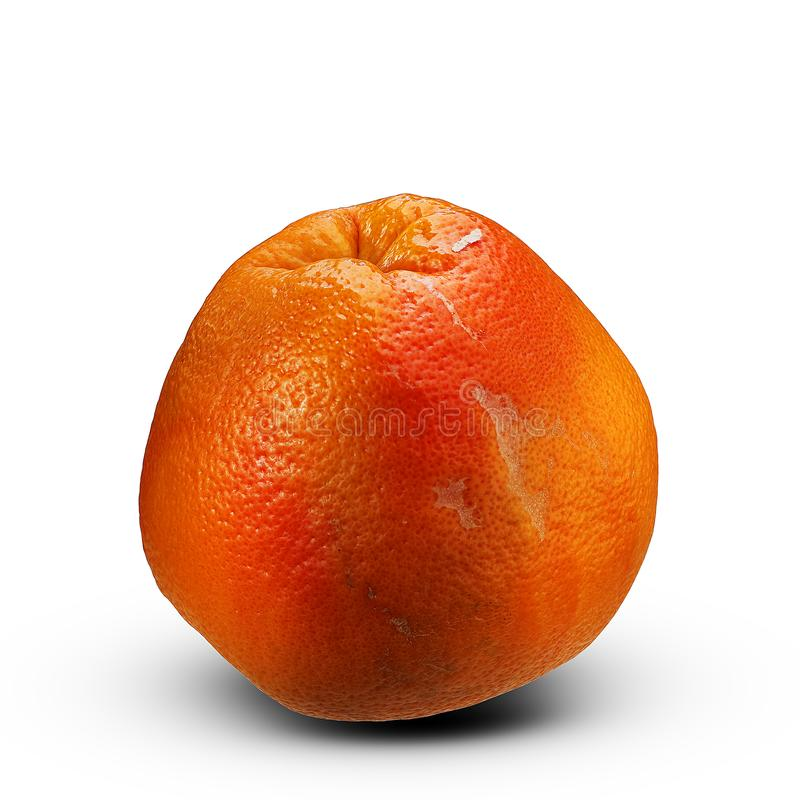 Grote rijpe grapefruit stock foto