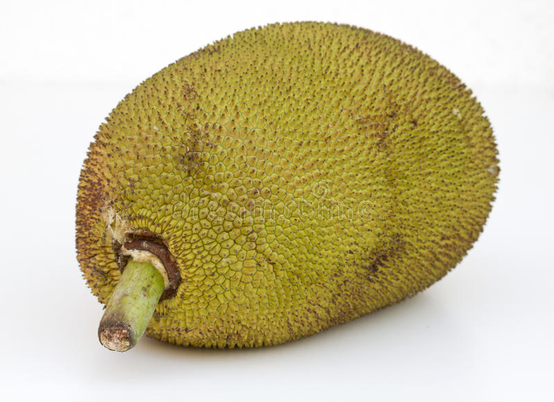 Grote rijpe jackfruit Goa van India royalty-vrije stock foto's