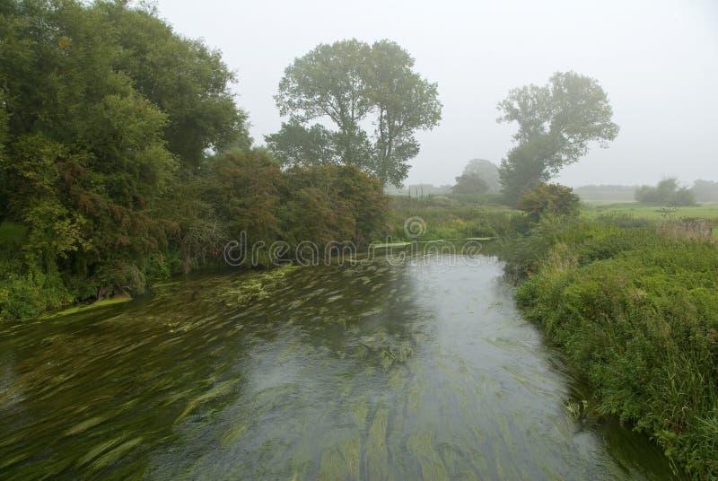 Grote Rivier Ouse Bedfordshire Engeland het UK royalty-vrije stock fotografie