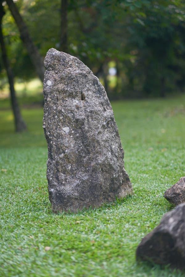 Grote rots op grasgebied in park royalty-vrije stock afbeelding