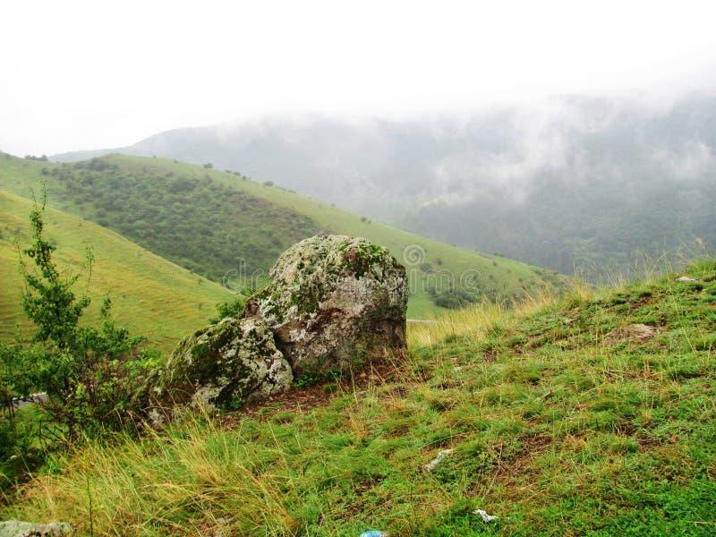 Grote rots op het gebied in de bergen, Transsylvania, Roemenië royalty-vrije stock foto's