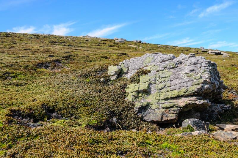 Grote Rots op Karkaseiland royalty-vrije stock foto's